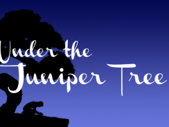 """Book Review: Soaring Above the Circumstances"" (Under the Juniper Tree S3E1)"
