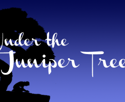 Under the Juniper Tree 009
